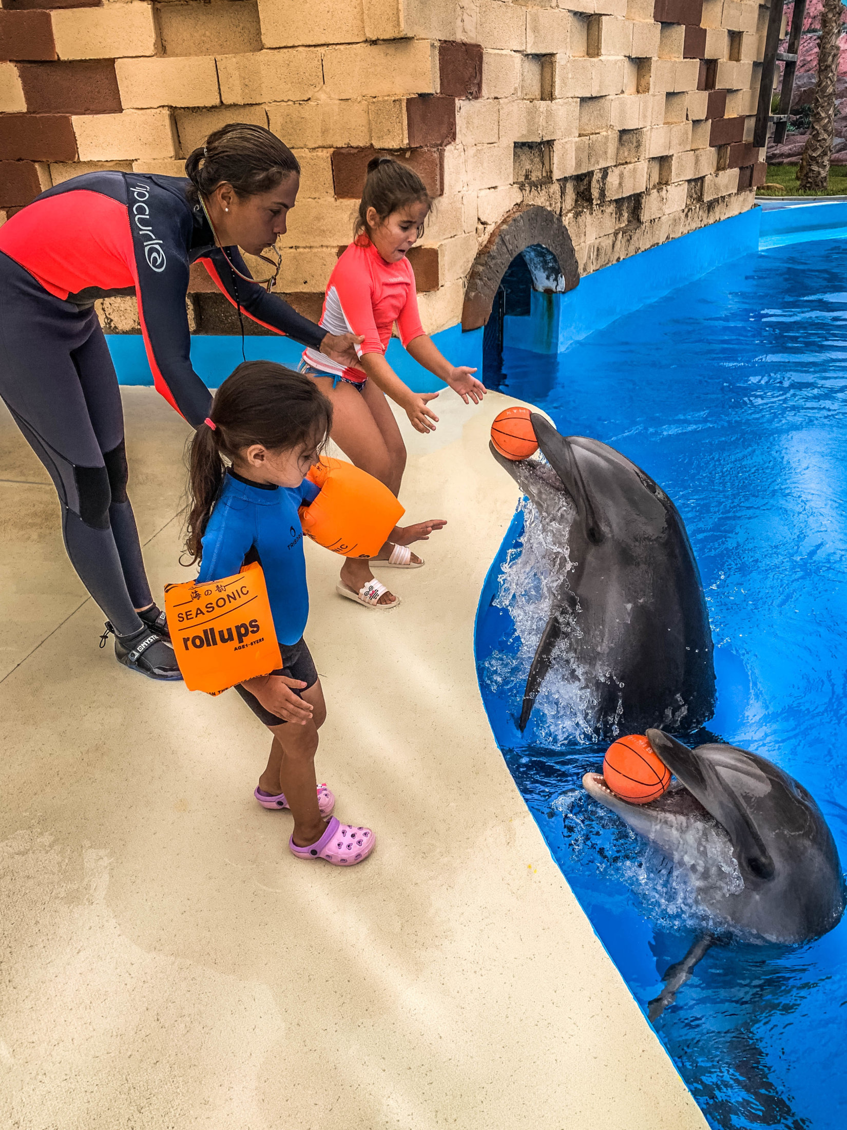 Dolphin Assisted Therapy (11 из 20)