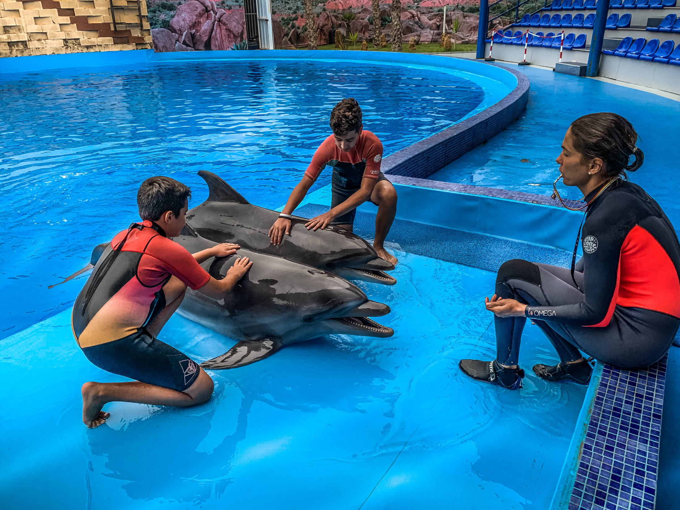 Dolphin Assisted Therapy (14 из 20)
