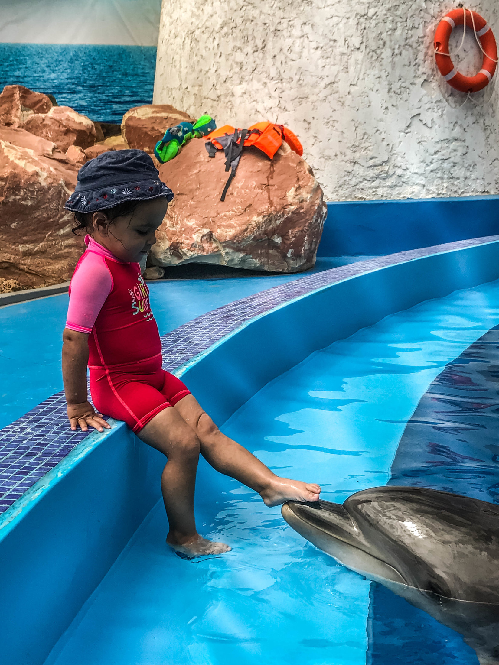 Dolphin Assisted Therapy (15 из 20)