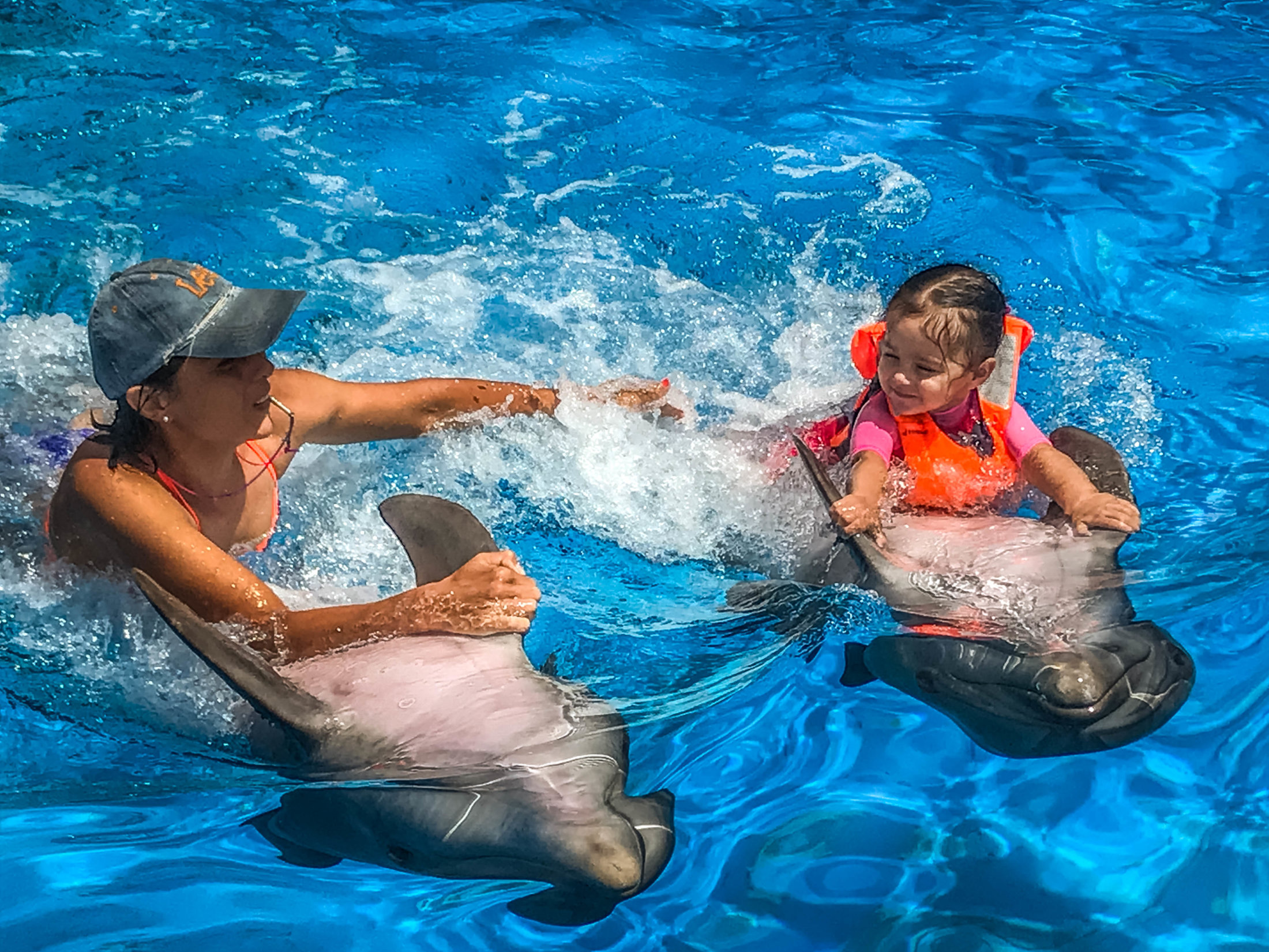 Dolphin Assisted Therapy (16 из 20)