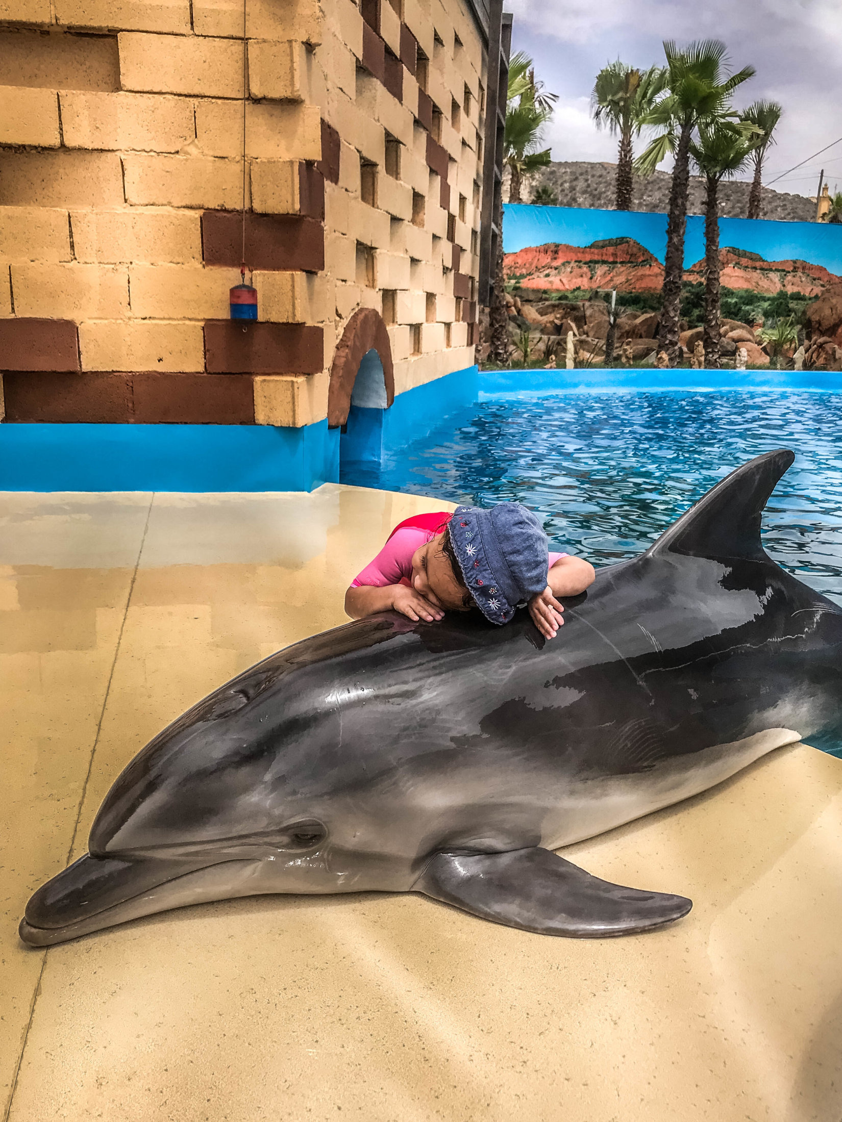 Dolphin Assisted Therapy (17 из 20)