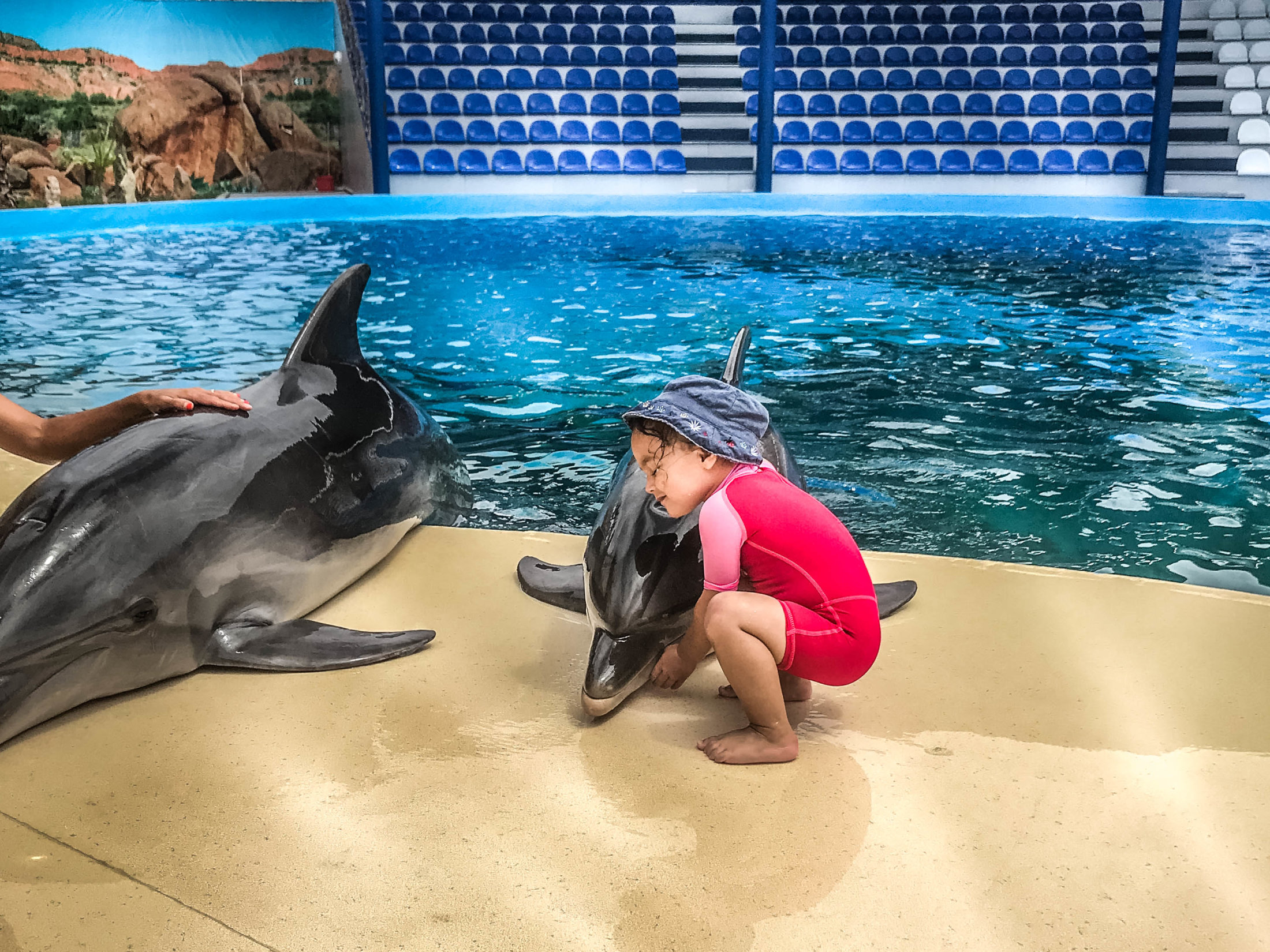 Dolphin Assisted Therapy (20 из 20)
