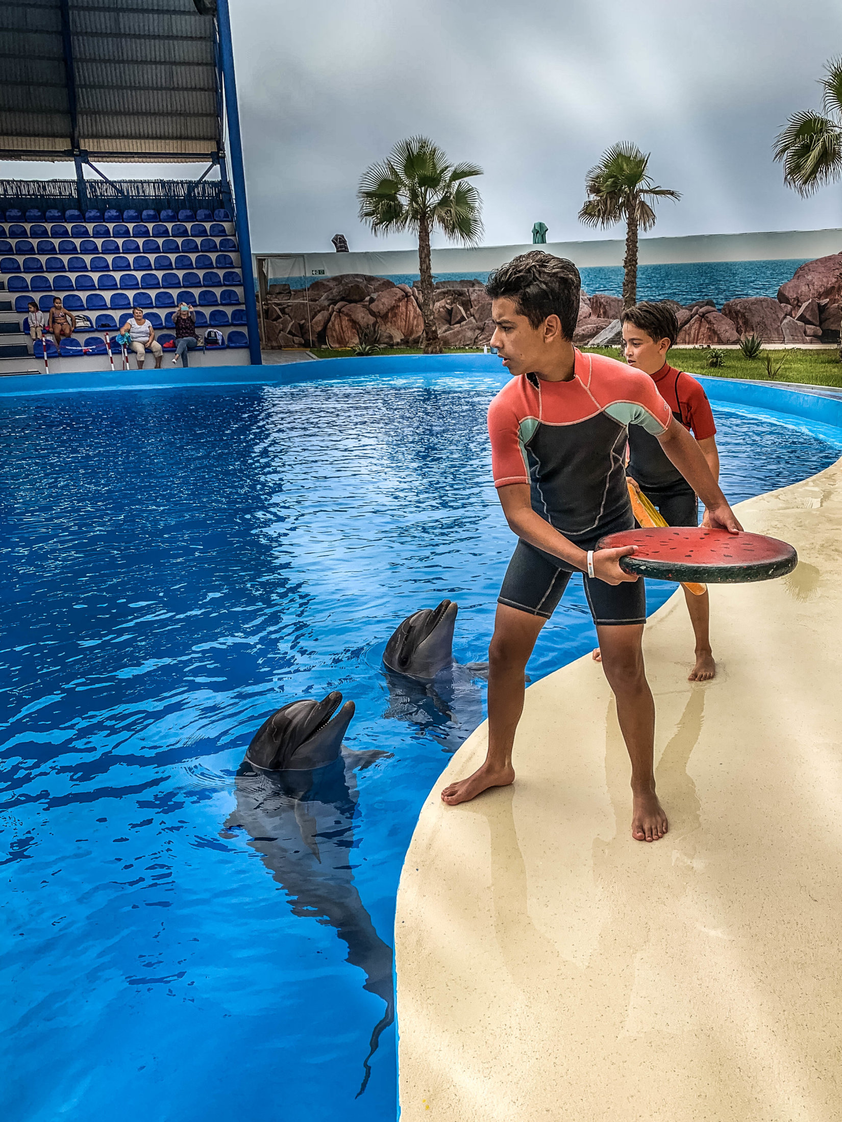 Dolphin Assisted Therapy (8 из 20)